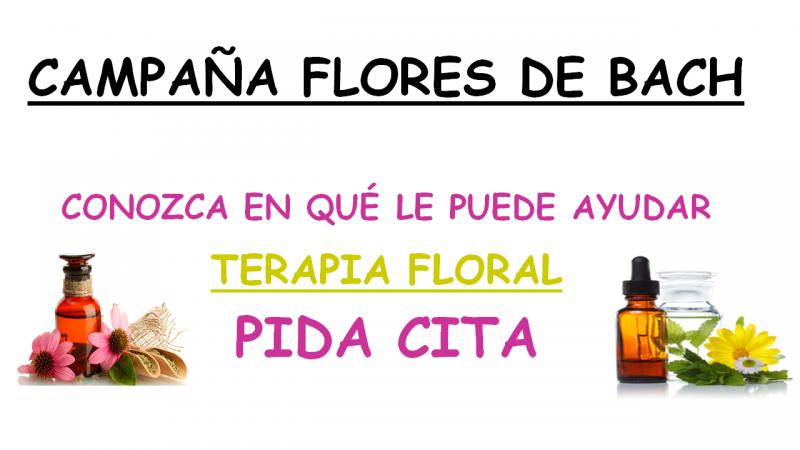 Campaña Flores de Bach