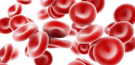 """Recomendaciones Nutricionales: """"Anemia""""… y alimentación"""